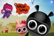 Ninja Land Play