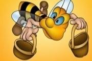 The Bee Way Play